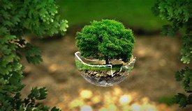 nature ecologie
